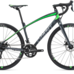 2018 GIANT ANYROAD 2